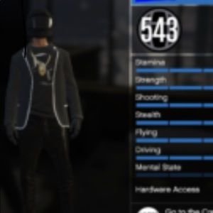 I'm selling a Gta account